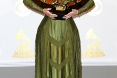 Grammys Outfits 2017